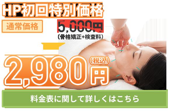 美容鍼:HP初回特別料金